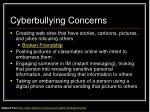 cyberbullying concerns