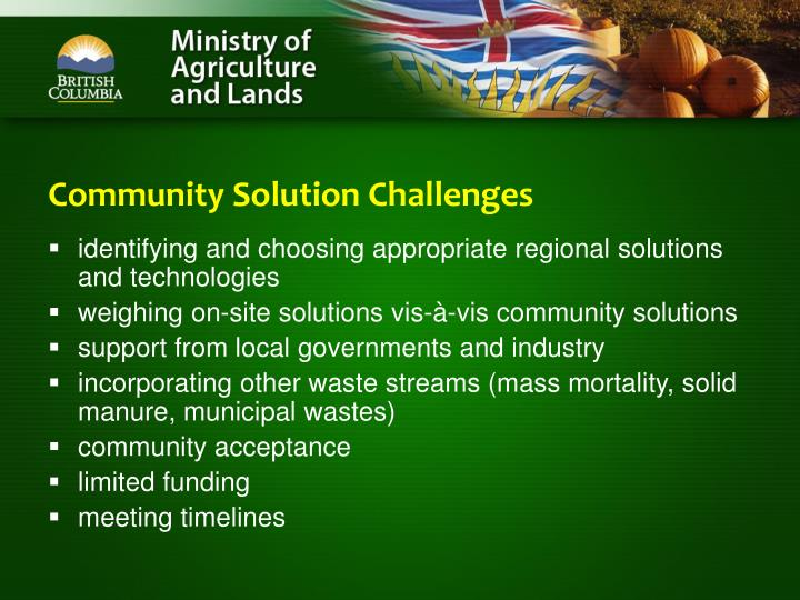 Community Solution Challenges