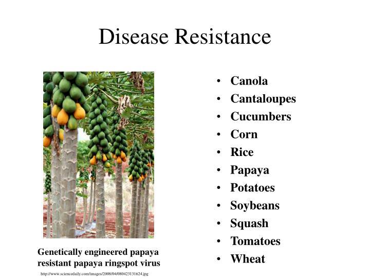 Disease Resistance