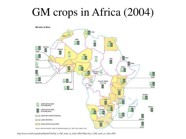 GM crops in Africa (2004)