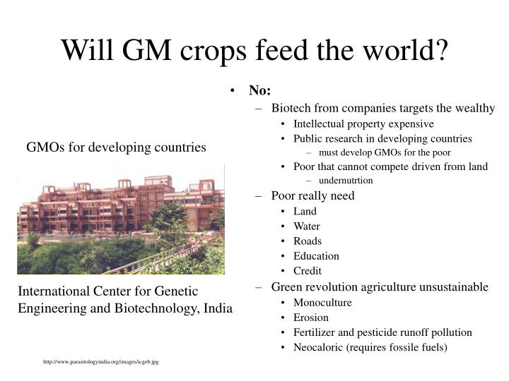 Will GM crops feed the world?