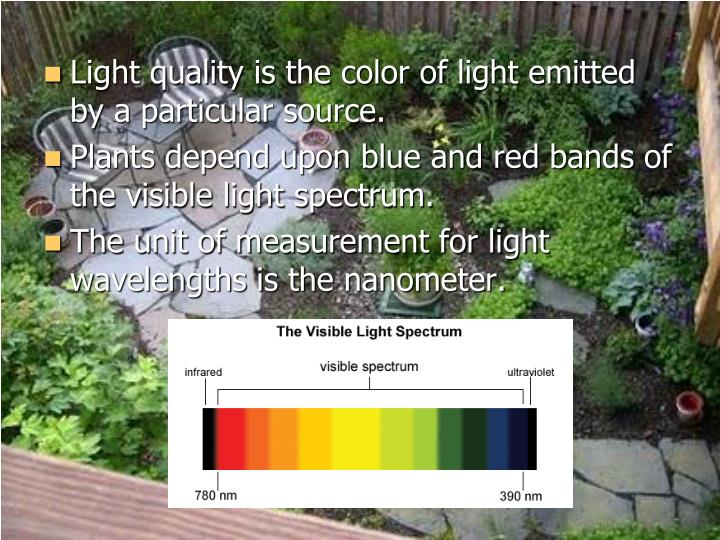 Light quality is the color of light emitted by a particular source.