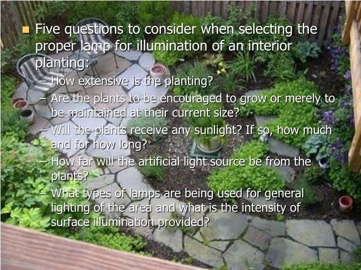Five questions to consider when selecting the proper lamp for illumination of an interior planting: