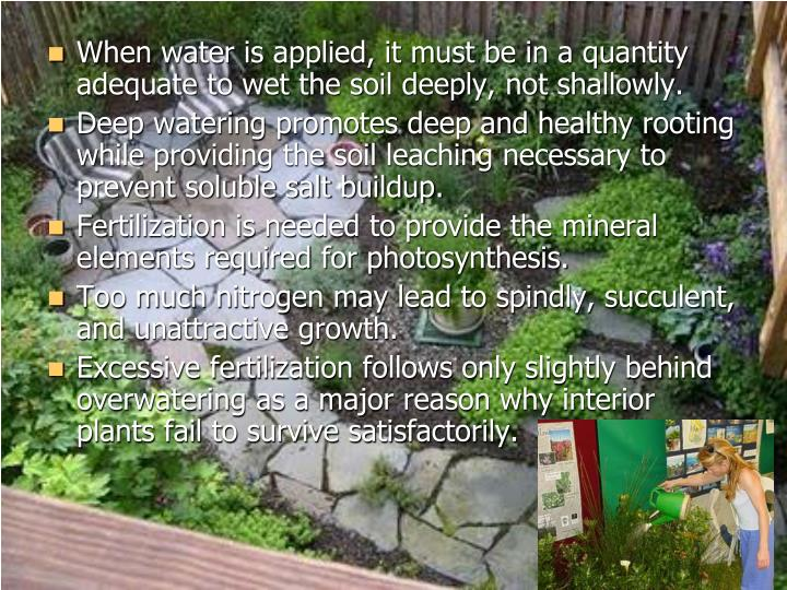 When water is applied, it must be in a quantity adequate to wet the soil deeply, not shallowly.