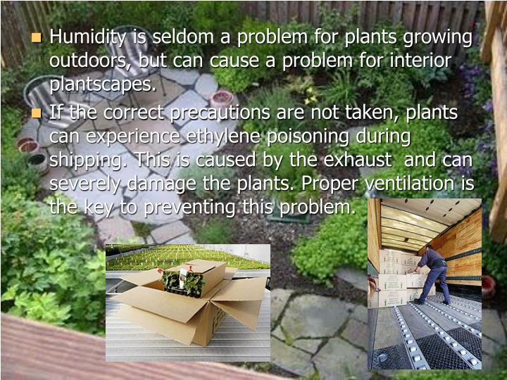 Humidity is seldom a problem for plants growing outdoors, but can cause a problem for interior plantscapes.