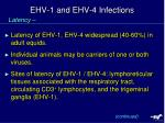 ehv 1 and ehv 4 infections1