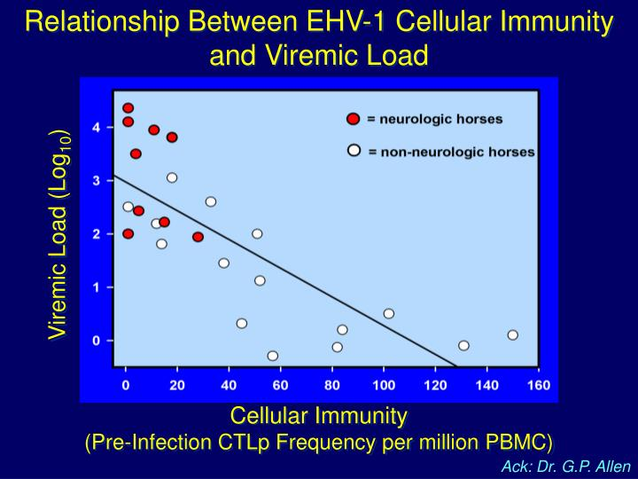 Relationship Between EHV-1 Cellular Immunity and Viremic Load