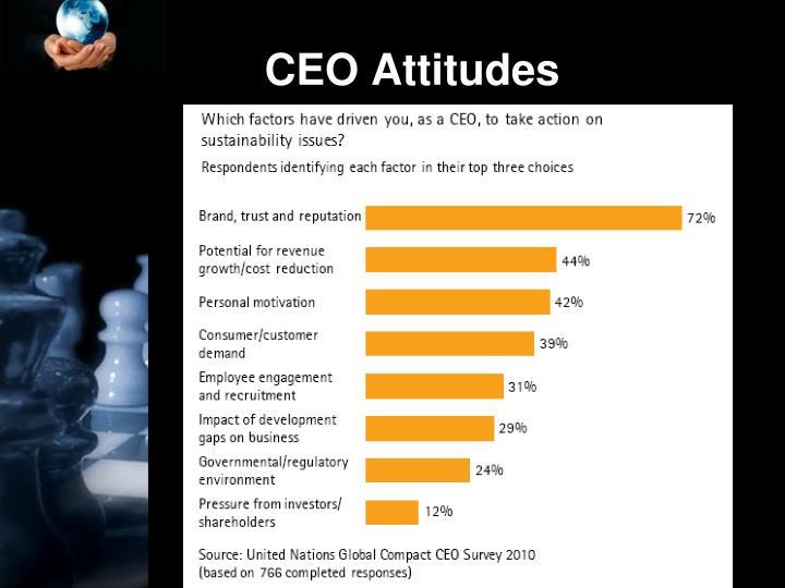 CEO Attitudes