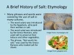 a brief history of salt etymology