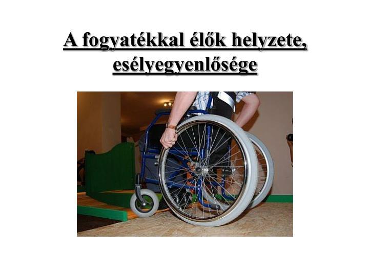 A fogyatékkal élők helyzete, esélyegyenlősége