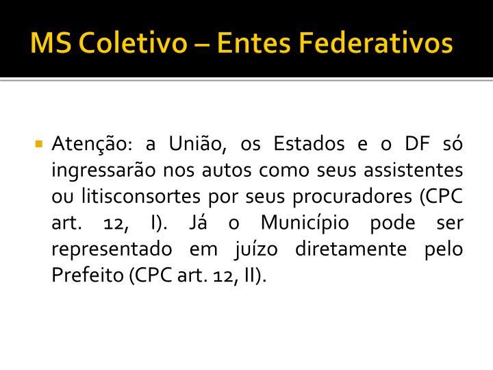 MS Coletivo – Entes Federativos