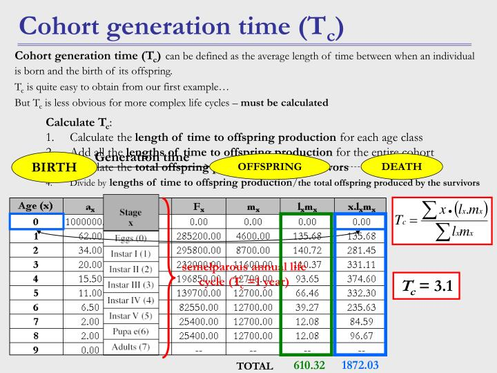 semelparous annual life cycle (T