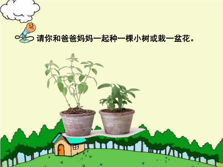 请你和爸爸妈妈一起种一棵小树或栽一盆花。