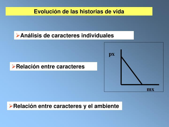 Evolución de las historias de vida