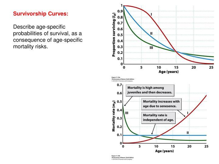 Survivorship Curves: