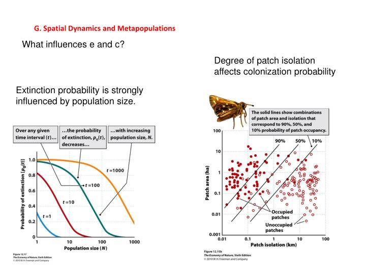 G. Spatial Dynamics and Metapopulations