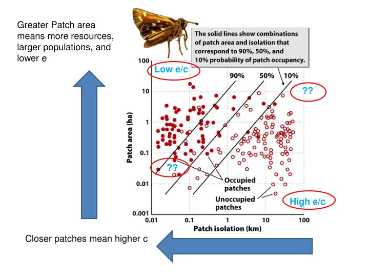 Greater Patch area means more resources, larger populations, and lower e