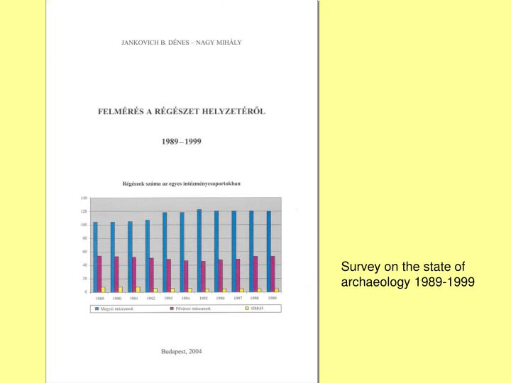 Survey on the state of archaeology 1989-1999