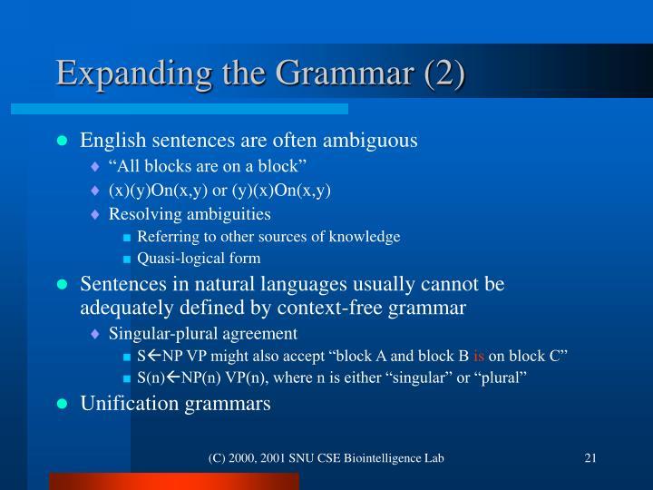 Expanding the Grammar (2)