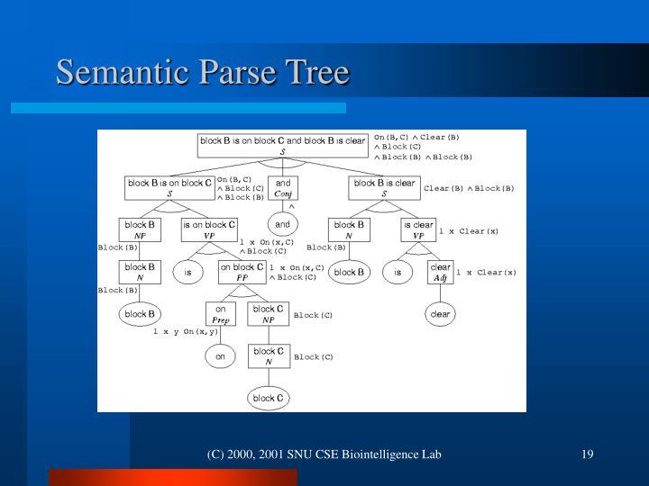 Semantic Parse Tree