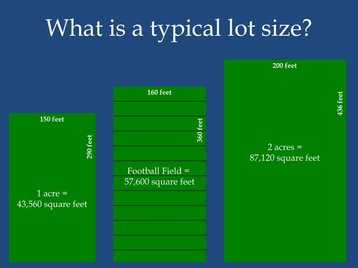 What is a typical lot size?