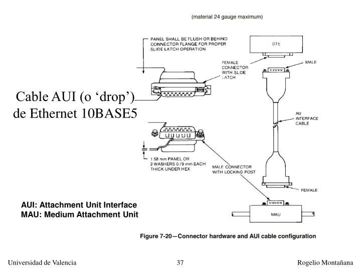 Cable AUI (o 'drop')