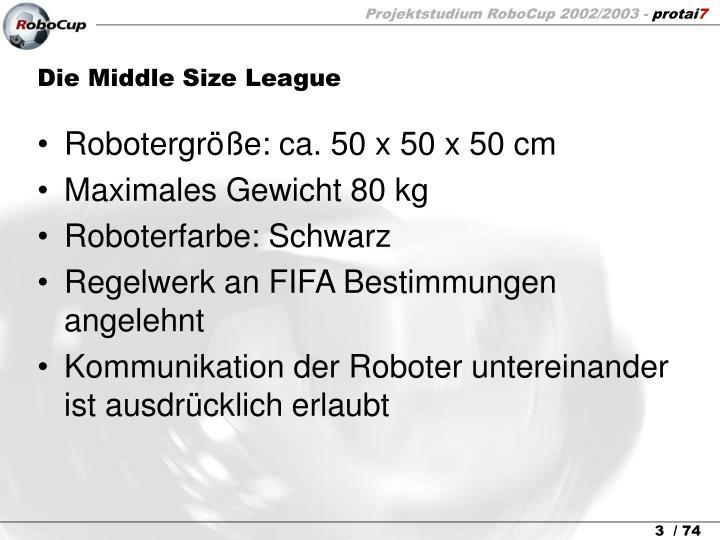 Die Middle Size League