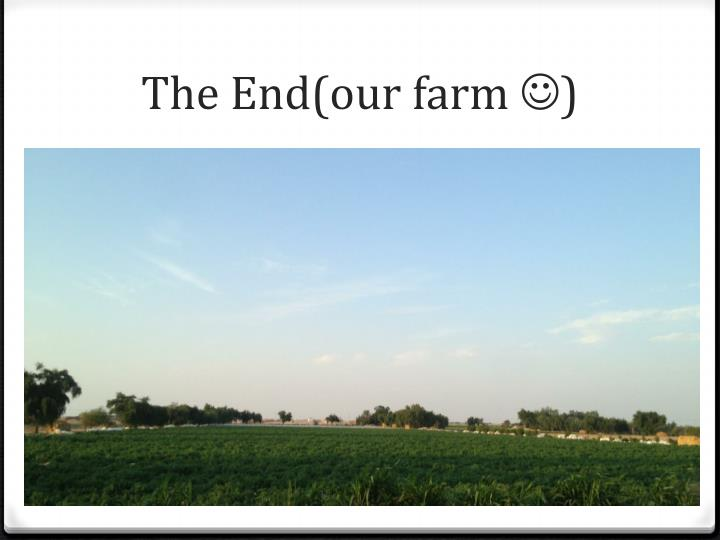 The End(our farm