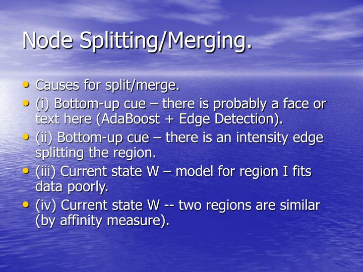 Node Splitting/Merging.