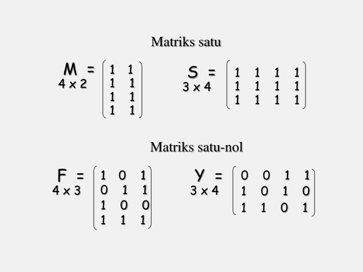 Matriks satu