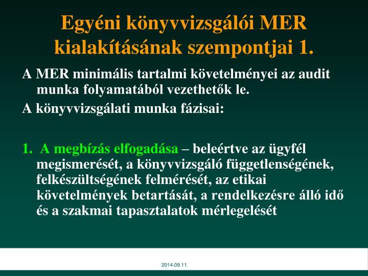 Egyéni könyvvizsgálói MER kialakításának szempontjai 1.