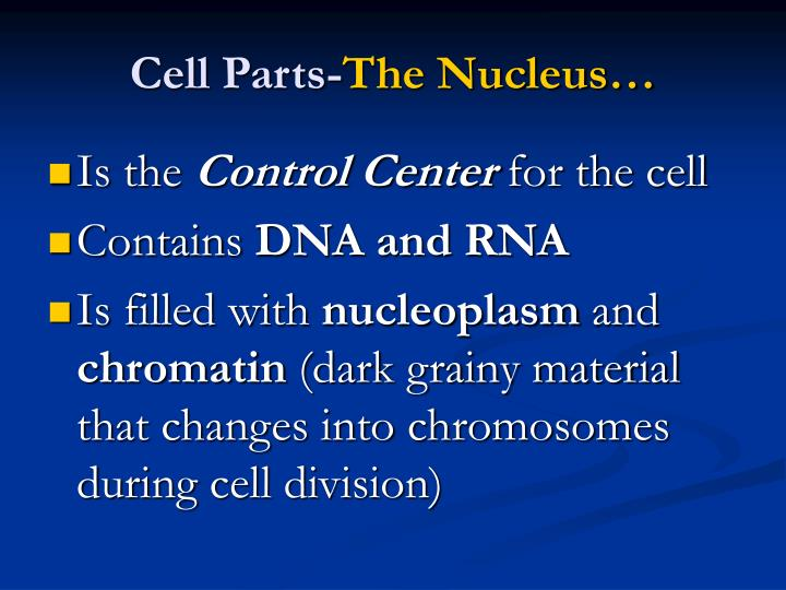 Cell Parts-