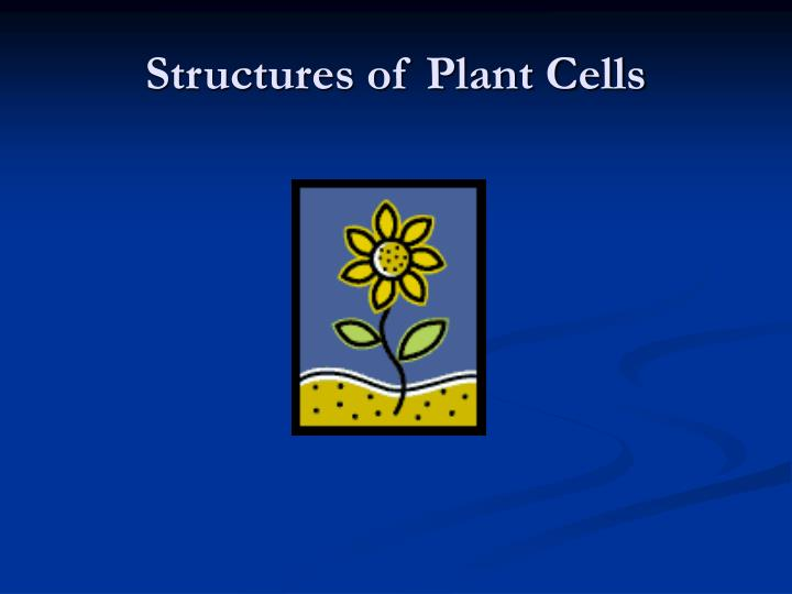 Structures of Plant Cells
