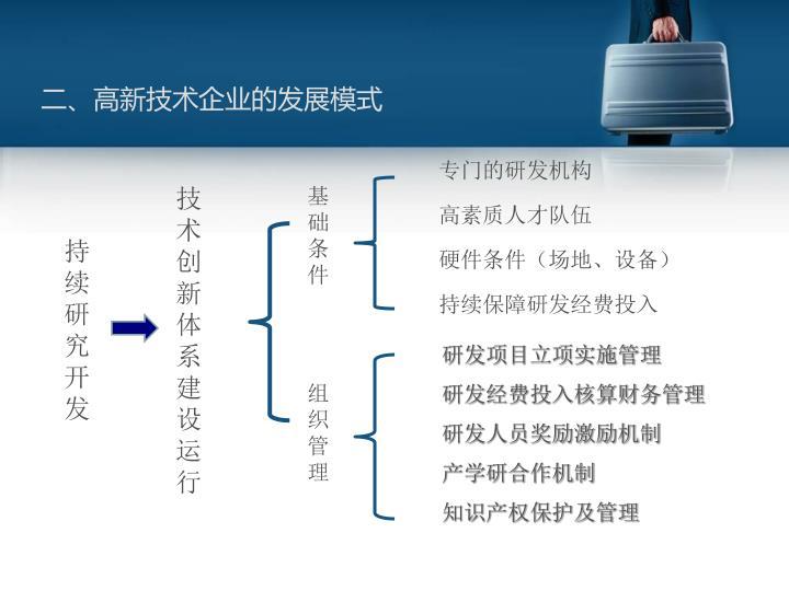 二、高新技术企业的发展模式