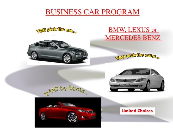 BUSINESS CAR PROGRAM