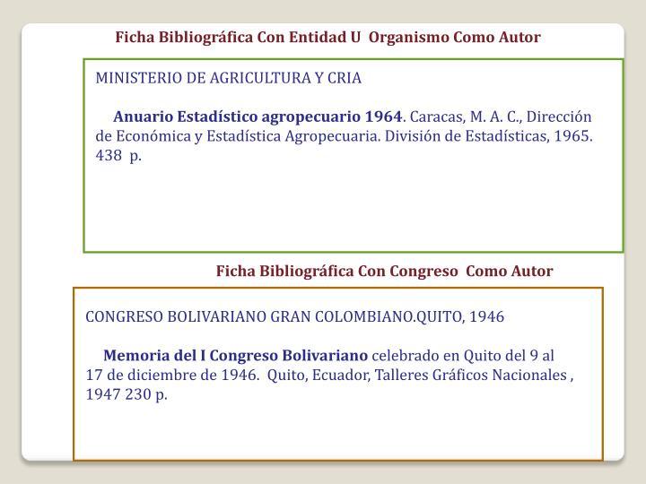 Ficha Bibliográfica Con Entidad U  Organismo Como Autor