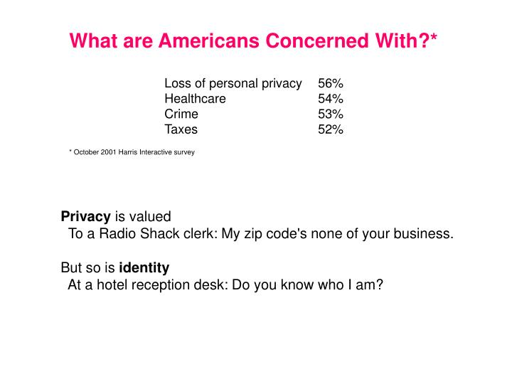 What are Americans Concerned With?*