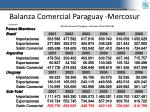 balanza comercial paraguay mercosur
