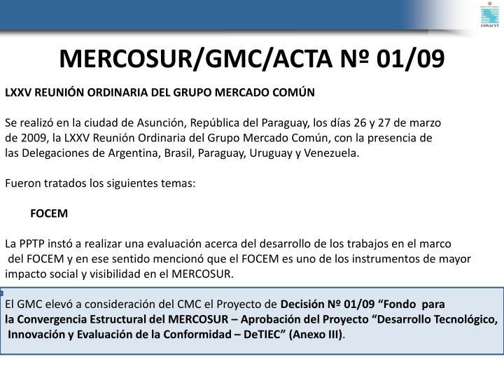 MERCOSUR/GMC/ACTA Nº 01/09