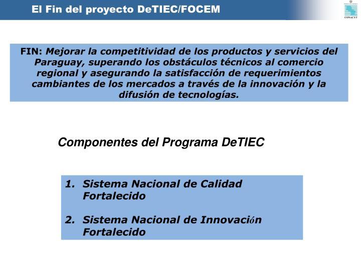 El Fin del proyecto DeTIEC/FOCEM