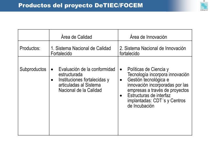 Productos del proyecto DeTIEC/FOCEM