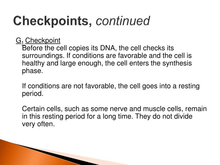 Checkpoints,