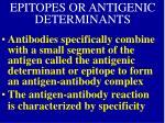 epitopes or antigenic determinants