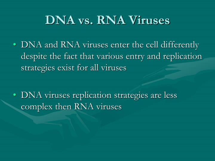 DNA vs. RNA Viruses