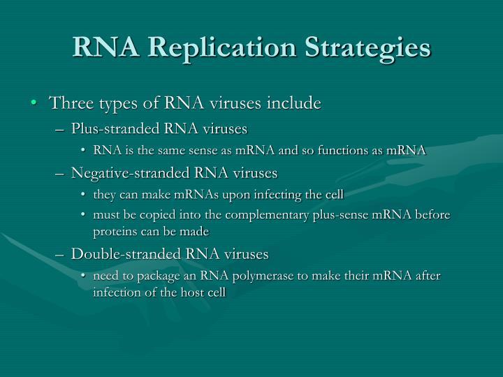 RNA Replication Strategies