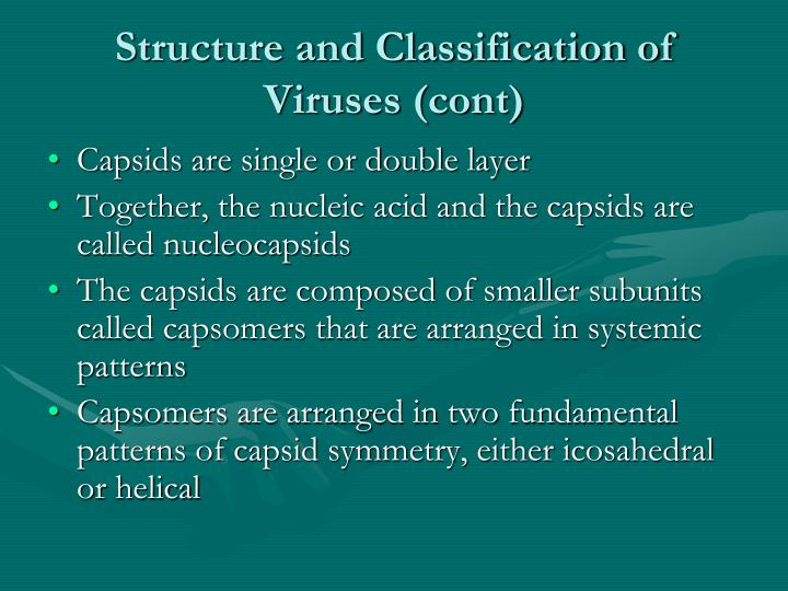 Structure and Classification of Viruses (cont)