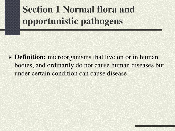 Section 1 Normal flora and opportunistic pathogens