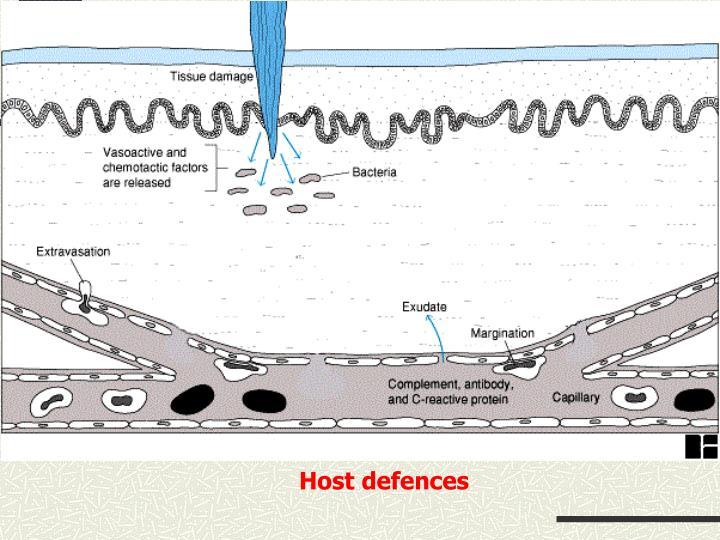 Host defences