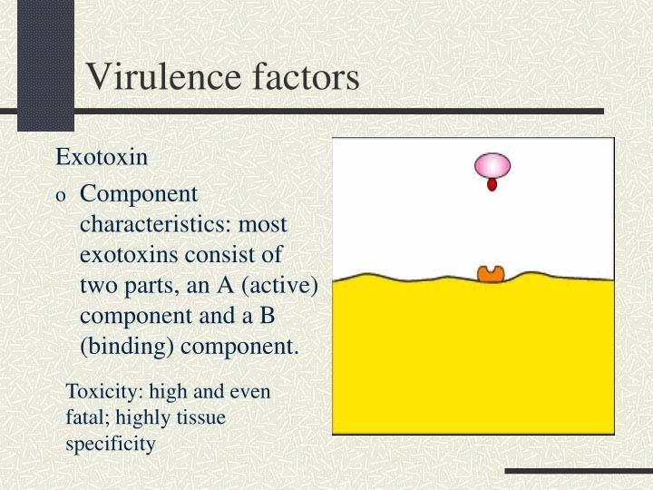 Virulence factors