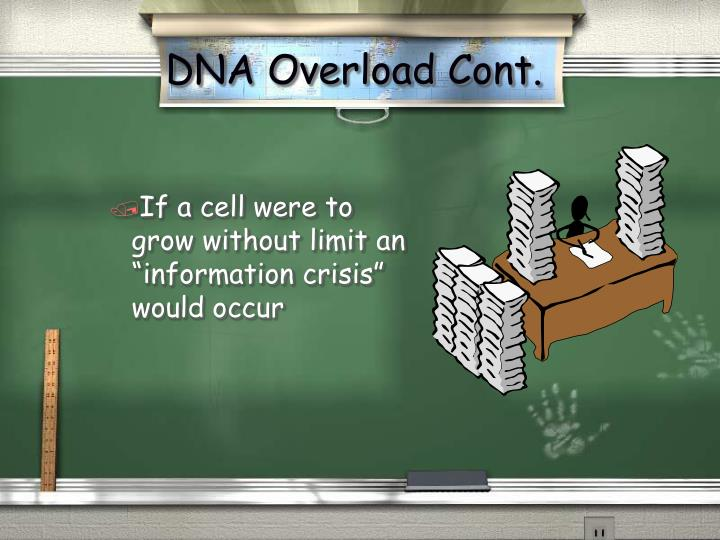 DNA Overload Cont.